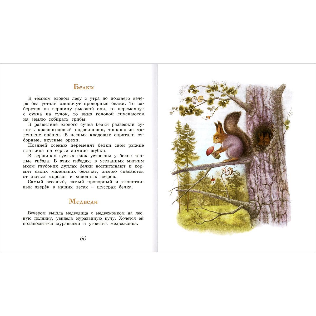 Домик в лесу, И. С. Соколов-Микитов
