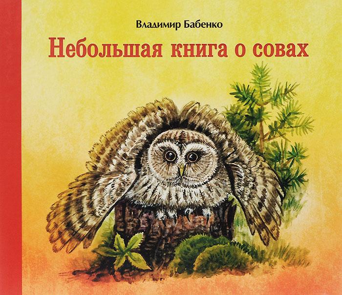 Небольшая книга о совах, Владимир Бабенко