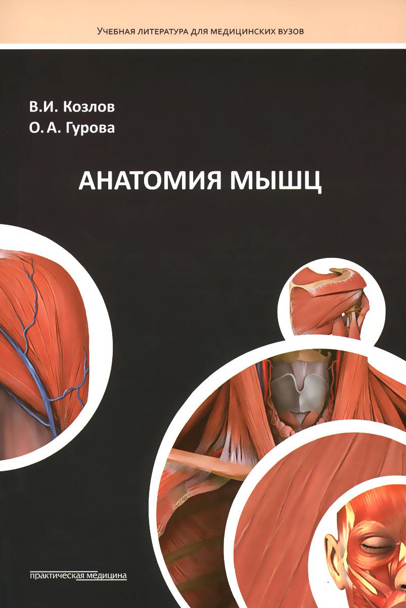 Анатомия мышц. Учебное пособие, В. И. Козлов, О. А. Гурова