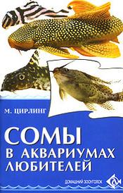 Сомы в аквариумах любителей, М. Цирлинг