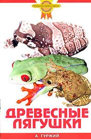 Древесные лягушки, А. Гуржий