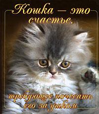 Кошка - это счастье, требующее почесать его за ушком,