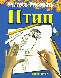 Учитесь рисовать птиц, Дэвид Браун