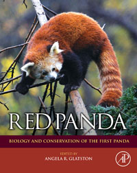 Red Panda,,