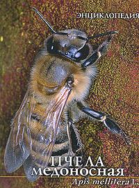 Пчела медоносная. Энциклопедия,