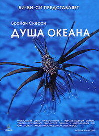 Душа океана, Брайан Скерри