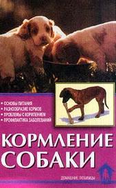 Кормление собаки, В. Л. Зорин