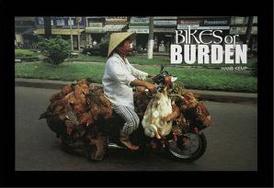 Bikes of Burden,