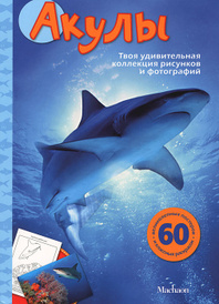 Акулы, Сэл Эмма