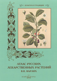 В. К. Варлих. Атлас русских лекарственных растений, С. Иванов