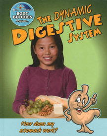 The Dynamic Digestive System: How Does My Stomach Work?,