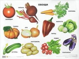 Овощи. Плакат,