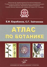 Атлас по ботанике. Анатомия, морфология и систематика высших растений, Е. И. Барабанов, С. Г. Зайчикова