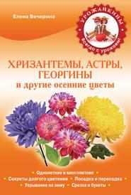 Хризантемы, астры, георгины и другие осенние цветы, Елена Вечерина