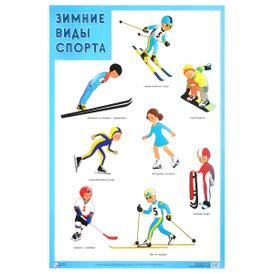 Зимние виды спорта. Плакат,