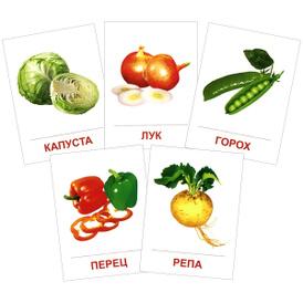 Овощи (набор из 16 карточек),
