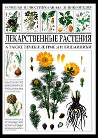 Большая иллюстрированная энциклопедия. Лекарственные растения,