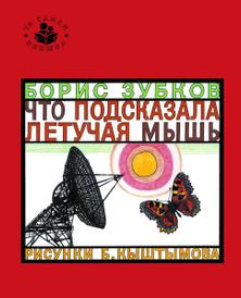 Что подсказала летучая мышь, Борис Зубков