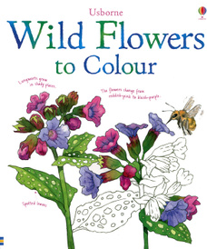 Wild Flowers to Colour,