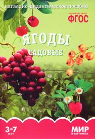 Ягоды садовые. Наглядно-дидактическое пособие. Для детей 3-7 лет (набор карточек), Т. Минишева