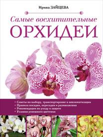 Самые восхитительные орхидеи, Ирина Зайцева
