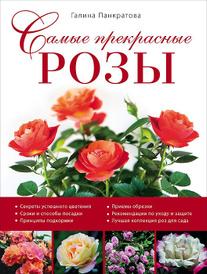 Самые прекрасные розы, Галина Панкратова
