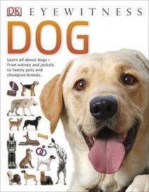 Dog (+ poster),