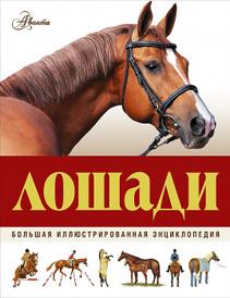 Лошади. Большая иллюстрированная энциклопедия, Джейн Холдернесс-Роддам