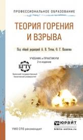 Теория горения и взрыва. Учебник и практикум,