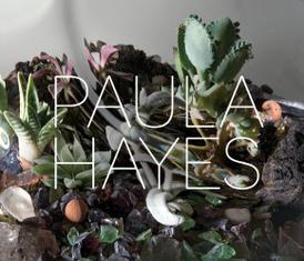 Paula Hayes,