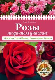Розы на дачном участке, Анна Белякова