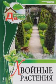 Хвойные растения. Том 21, Константин Коржавин