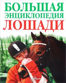 Лошади. Большая энциклопедия,