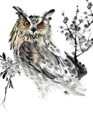 Японская живопись суми-э. Филин. Блокнот mini, Гапчинская Евгения