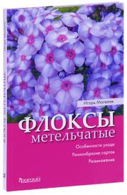 Флоксы метельчатые, Игорь Матвеев