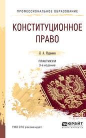 Конституционное право. Практикум. Учебное пособие, Л. А. Нудненко