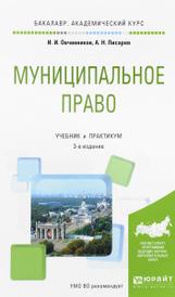 Муниципальное право. Учебник и практикум, И. И. Овчинников, А. Н. Писарев