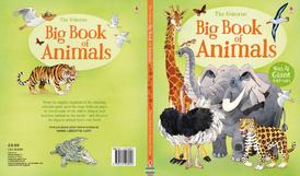 Big Book of Animals,