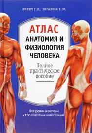 Анатомия и физиология человека. Атлас, Г. Л. Билич, Е. Ю. Зигалова