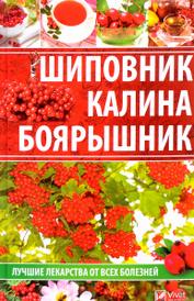 Шиповник, калина, боярышник. Лучшие лекарства от всех болезней, Раиса Сайдакова