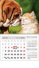 Календарь 2018 (на спирали). Забавные малыши,