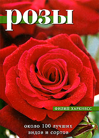Розы. Около 100 лучших видов и сортов, Филип Харкнесс