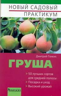 Груша, Дмитрий Тонких