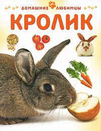 Кролик, Мэтью Рейнер