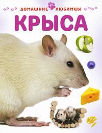 Крыса, Мэтью Рейнер