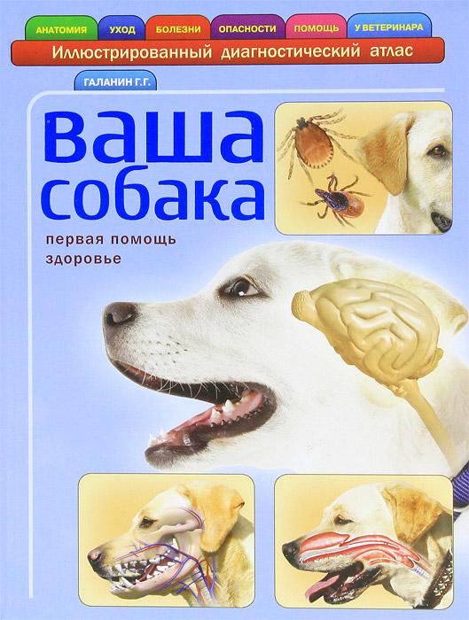 Ваша собака, Г. Г. Галанин