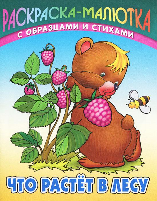 Что растет в лесу, Сергей Кузьмин