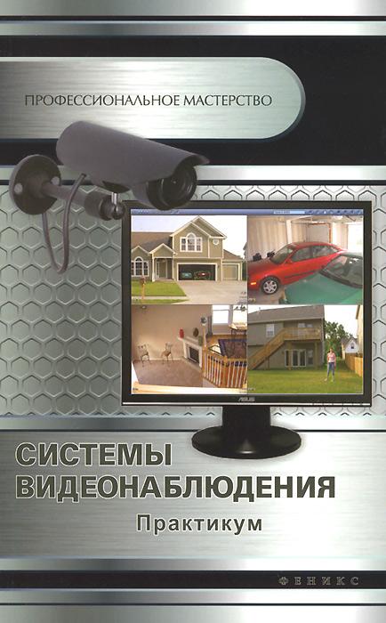 Системы видеонаблюдения. Практикум, А. П. Кашкаров