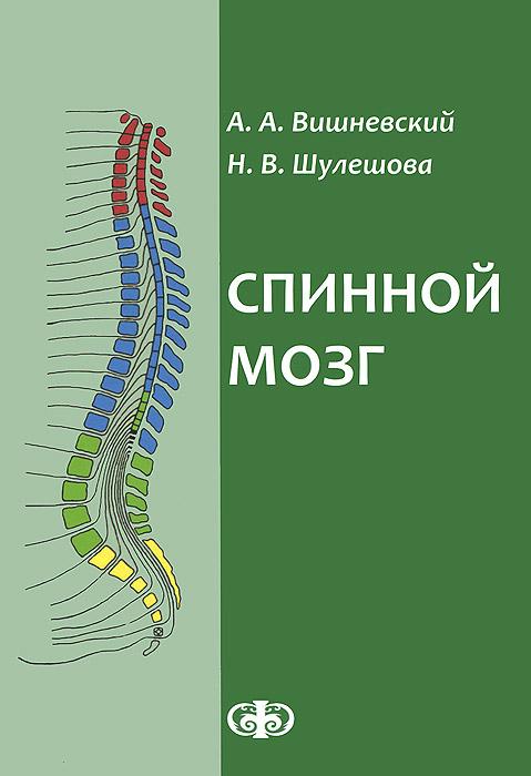 Спинной мозг. Клинические и патофизиологические сопоставления, А. А. Вишневский, Н. В. Шулешова