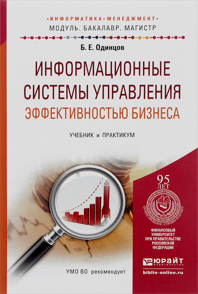 Информационные системы управления эффективностью бизнеса. Учебник и практикум, Б. Е. Одинцов